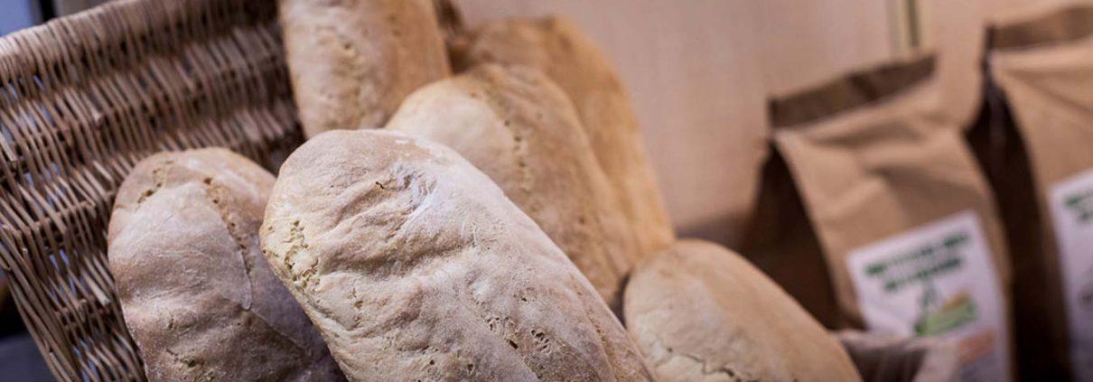 pane di chiaserna - in consegna
